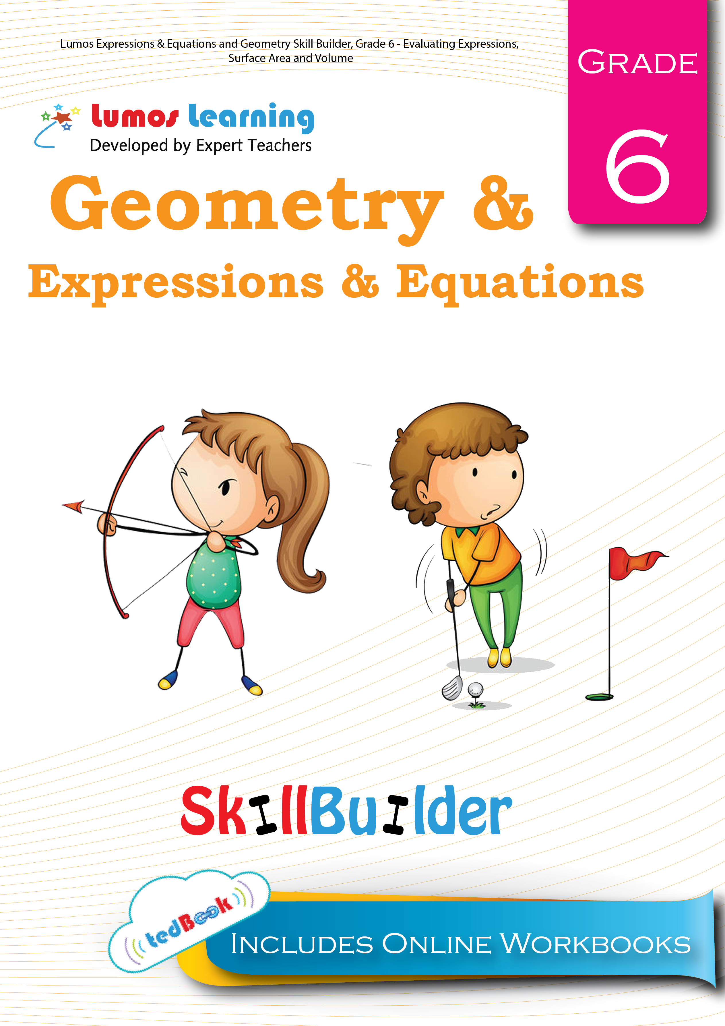 Geometry and Expressions and Equations grade 6