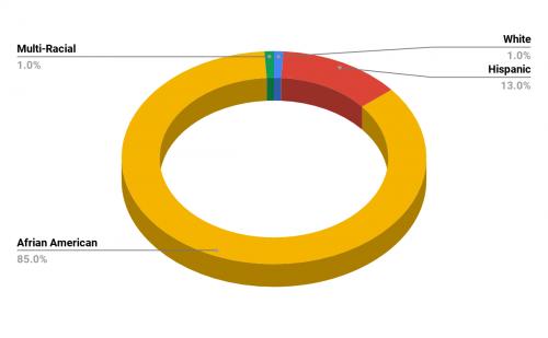 Langdon Elementary School Demographics