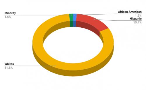Kiowa Middle School Demographics
