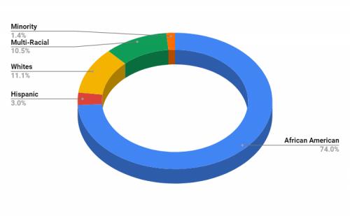 South Elementary School Demographics