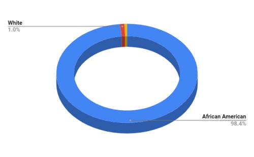 Wilkinson County Elementary School Demographics
