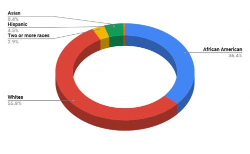Bearden Elementary School Demographics