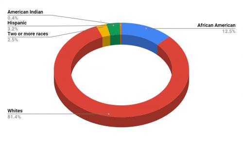 Dewitt Middle School Demographics