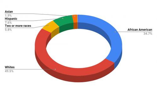 Georgia Cyber Academy Demographics