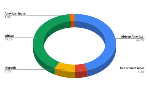 Gibson Elementary School Demographics