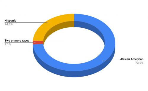 Palmview Elementary School Demographics