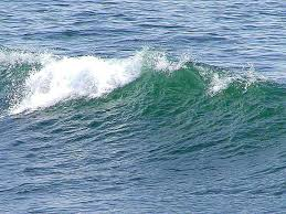 A Life on the Ocean Wave