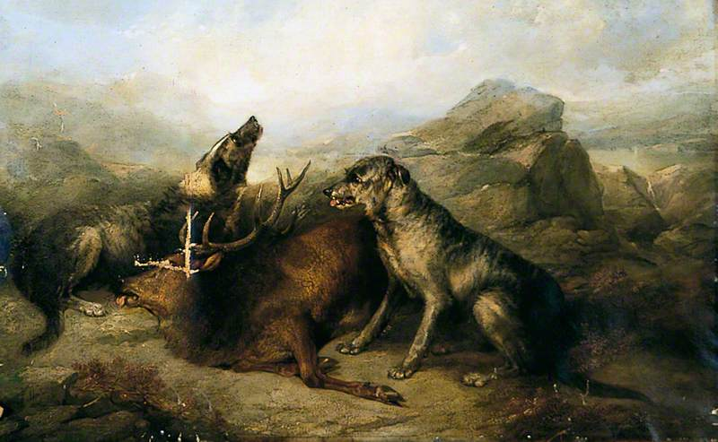 The Stag, The Wolf and The Dog