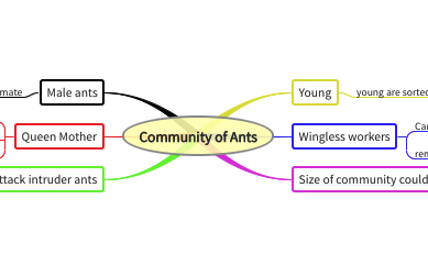 Community of Ants
